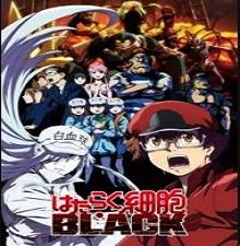 Hataraku Saibou Black TV Episode 13 English Subbed