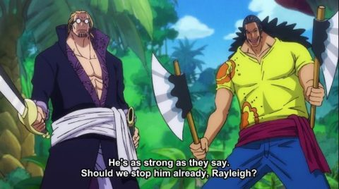 One Piece Episode 983 English Subbed